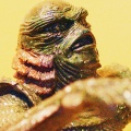 Creature / Black Lagoon